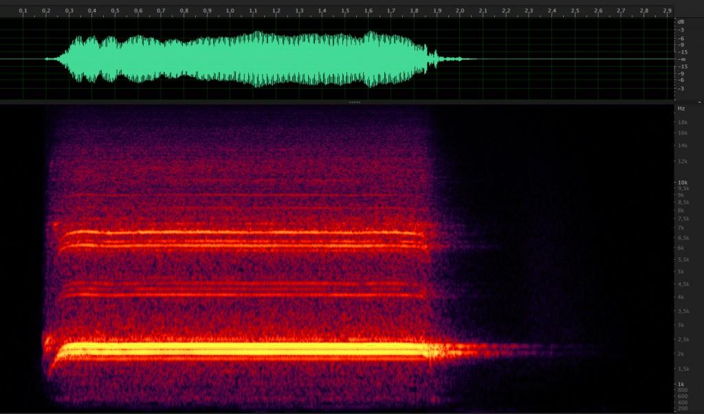 Representación de onda y espectrograma del silbato bitonal.
