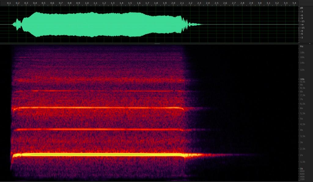 Representación de onda y espectrograma del silbato monotonal.